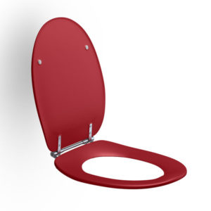 Coloured Toilet Seat